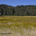 Plumas County, an important site in Lassen Volcanic National Monument.